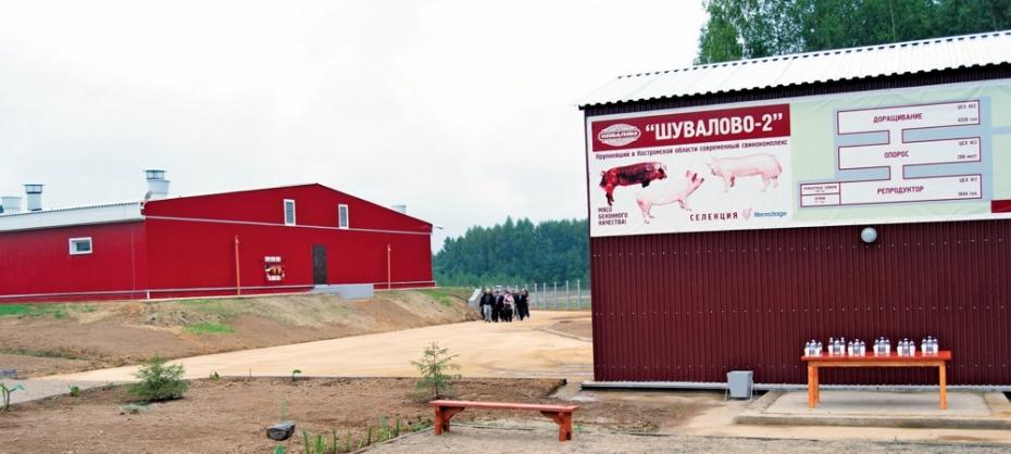 Площадка «Шувалово-2»