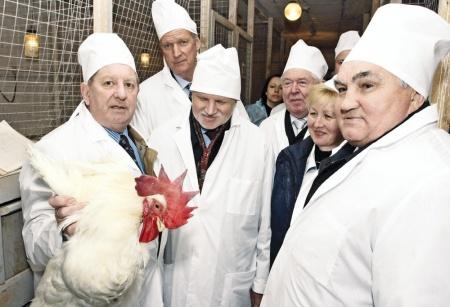 Владимир Фисинин: «Не побираться, а самим кормить Европу!»