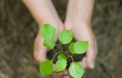 Дорогу ресурсосберегающему и точному земледелию