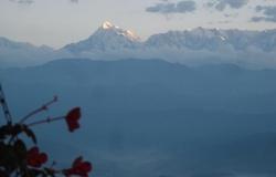Начат совместный немецко-индийский проект по выведению устойчивых к климатическим изменениям растений в Гималаях