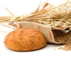 Кормовые компоненты и продовольственная безопасность