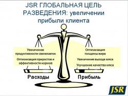 Презентация компании JSR Genetics: генетические линии и исследования