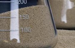 Микробная фитаза и перевариваемость фосфора