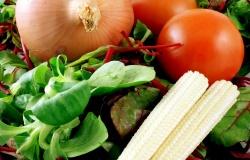 ФАО опубликовала тенденции развития сельского хозяйства до 2030 года
