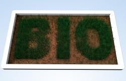 «Зеленые» удобрения