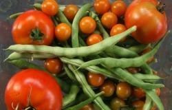 Благодаря чему растут продажи органических продуктов?