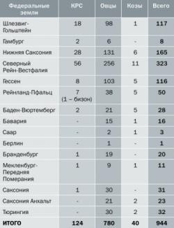Вирус Шмалленберг: появление, распространение, диагностика
