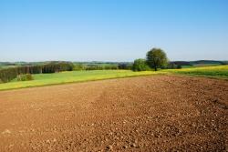 Четверть аграрных земель в мире деградированы