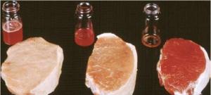 Оценка влияния различных факторов кормления на качество производимой свинины