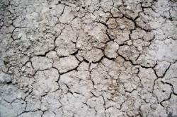 ООН предлагает принять нацпрограммы по борьбе с засухой