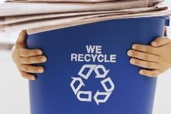 Перспективы использования отходов скотобоен