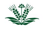03.10-05.10.2012 Дальагро. Продовольствие