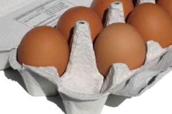 Российское мясо птицы и яйцо будет поставляться на Европейский рынок