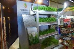 В Саратовской области была представлена технология выращивания гидропонных зеленых кормов