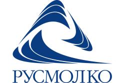 «Русмолко» показала устойчивый рост в 2012 году