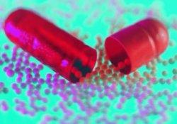 Антибиотики и корма