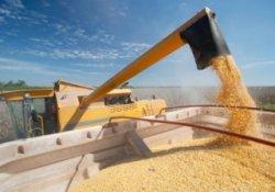 Расширение зерновых интервенций