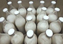 Производство ультрапастеризованного молока наладят в Бурятии