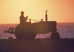 Сельхозпредприятия в Алтайском крае посетят аграрии из Нидерландов