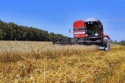 Китайцы вложат в сельхозпроект в Хакасии более 2 млрд долларов