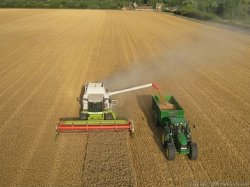 Урожайность Липецкого района оценили на твердую пятерку