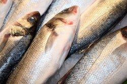 Экспорт рыбы и морепродуктов вырос на 14%