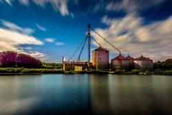 Будущее развитие кормовой индустрии