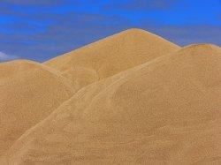 Товарные зерновые интервенции завершены - Минсельхоз России