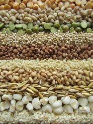 Цены на зерновом рынке России сохраняют тенденцию к росту