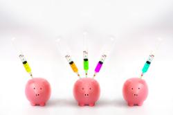 Европейские свиноводы сокращают использование антибиотиков