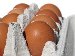 Золотая яичница: почему в России подорожали яйца?