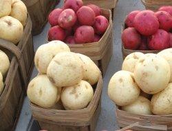 Росстат: Картофель находится в лидерах по росту цен за октябрь