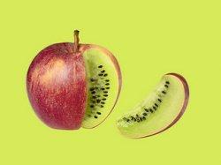 В России нет методики оценки рисков ГМО