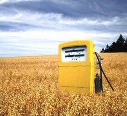 Минсельхоз ищет замену бензину
