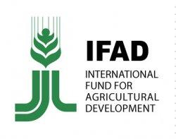 Россия вступает в Международный фонд сельскохозяйственного развития