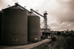 В Подмосковье планируется строительство крупного комбикормового завода