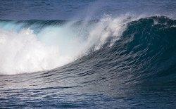 FAO: Необходим новый подход к управлению морскими ресурсами