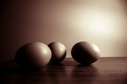 Ученые оценивают методики санитарной обработки яичной скорлупы