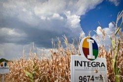 Евросоюз разрешил выращивание ГМО-кукурузы