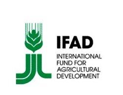 Россия стала полноправным членом IFAD