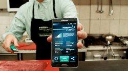 Разработано устройство для определения свежести мяса