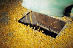 Объемы производства комбикормов в мире падают
