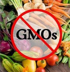 Глобальная коалиция за мир без ГМО