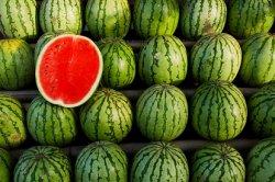 Ученые собрались производить биотопливо из арбузов