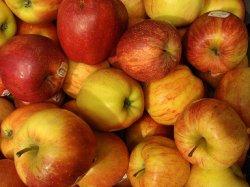 """Польша просит США купить """"запрещенные"""" яблоки"""