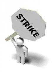 В Великобритании ветеринары вышли на забастовку