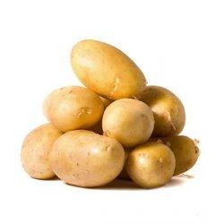 Сибирские ученые освоили микроклонирование картофеля