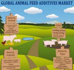 Кормовые добавки имеют наибольшую долю на ветеринарном рынке