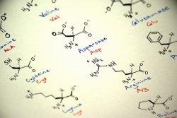 Рост спроса на послеспиртовую сухую барду ограничивается недостаточным производством синтетических аминокислот