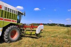 Сельхозпроизводители без иллюзий